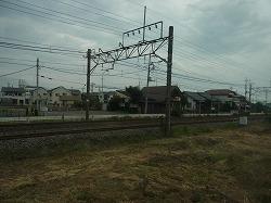 RIMG3373-250.jpg
