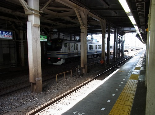 RIMG4600.jpg