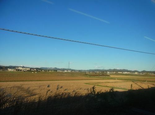 RIMG8900.jpg