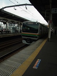 RIMG3313-250.jpg