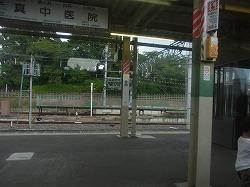 RIMG3331-250.jpg