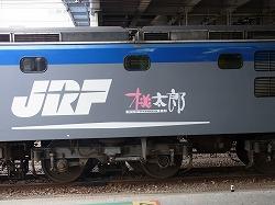 RIMG3398-250.jpg