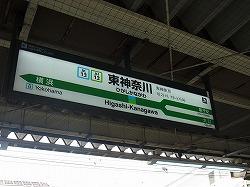 RIMG6635.jpg