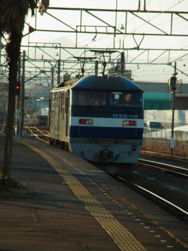 s-RIMG6871(小).jpg